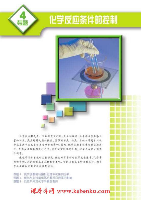 专题四 化学反应条件的控制