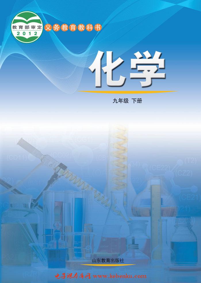 魯教版九年級化學下冊
