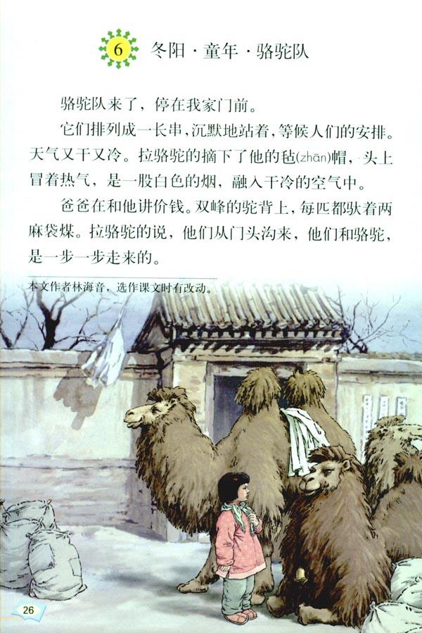「6」.冬阳*童年*骆驼队